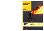 East mediterranean hydrocarbons